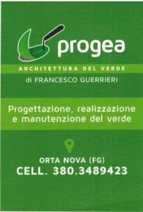 progea 1