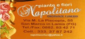 SAMMARCO Napolitano